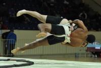 Чемпионат России сумо, Смоленск 2017