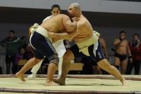 Чемпионат России по сумо. 2016, г. Кстово