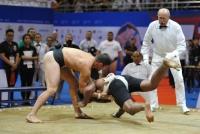 Чемпионат мира по сумо 2016 Улан-Батор